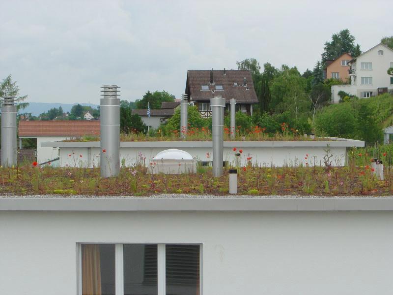 Dach – Flachdach – Schäden verhindern
